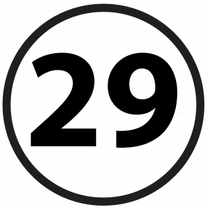 Numbers 29